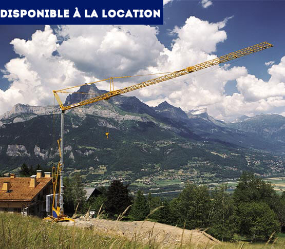 grue-montage-automatise-potain-igo-50-disp-location-4